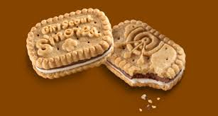 Girls Scout S'mores